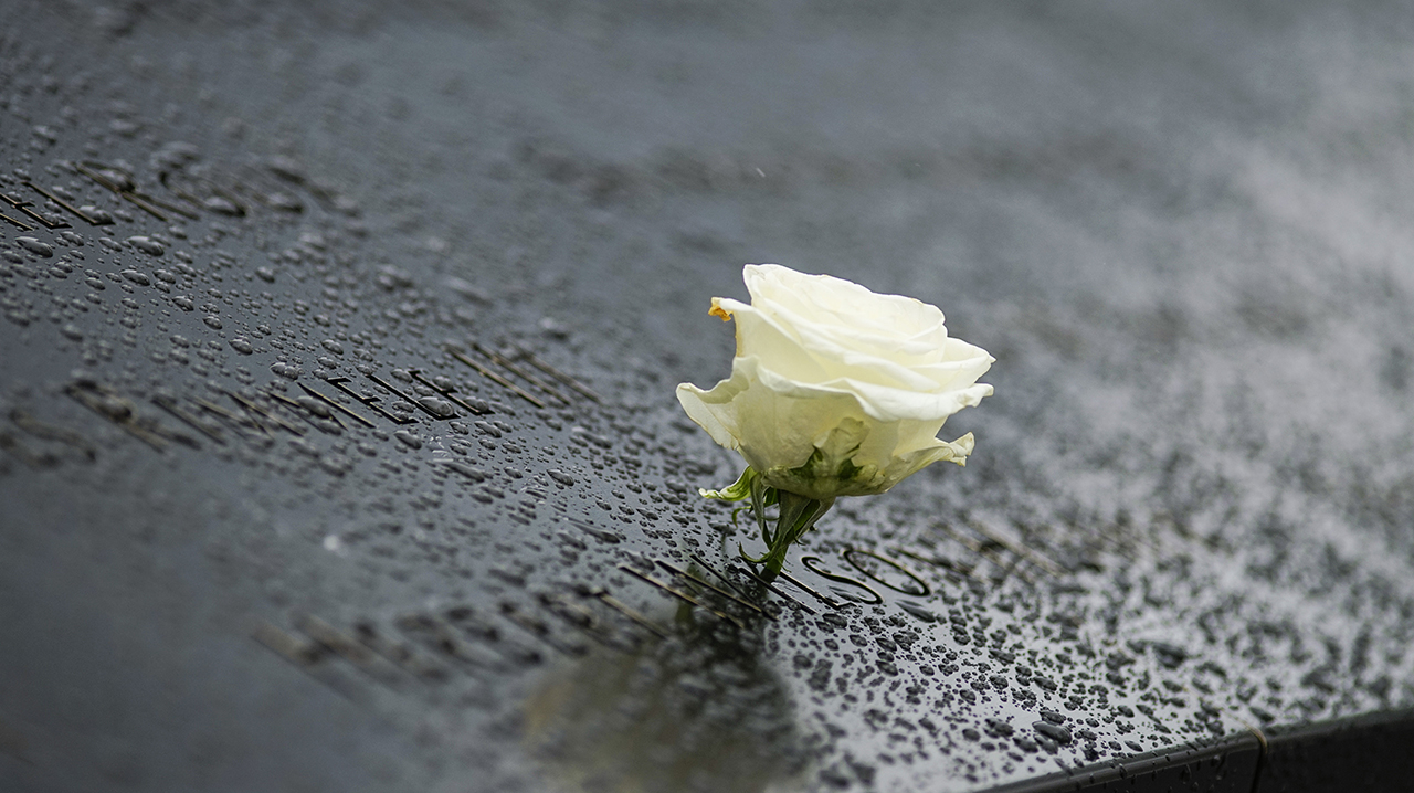 A single, white rose is placed at a name etched on a bronze parapet of the Memorial. The dark parapet glistens with raindrops.
